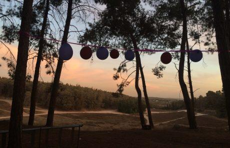לקראת יום העצמאות:מספר כללי הדלקת אש בשטחים פתוחים ושמירה על הטבע
