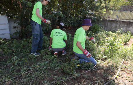 """פרויקט קק""""ל למען הקהילה חוזר לקראת ראש השנה גם ללודולרמלה"""