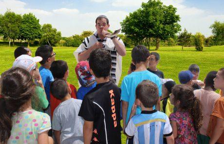 רשת 'אור תורה סטון' ו'ארגון רבני צהר' יקיימו תקיעות שופר המוניות במוקדים שונים בלוד