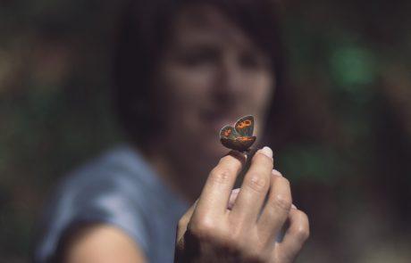 הפרפרים מובילים שינוי: תכנית חדשה בחינוך המיוחד
