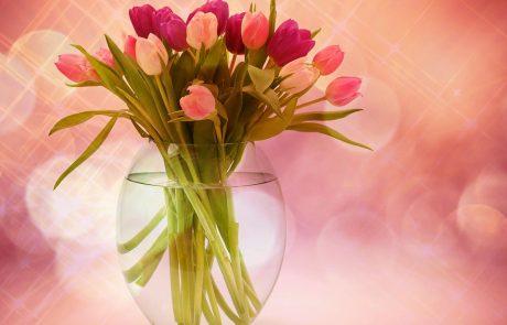 איך בוחרים זר פרחים ליום הולדת